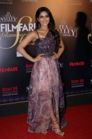 Filmfare-Glamour--Style-Awards-2019-Red-Carpet-(19)