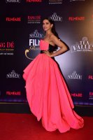 Filmfare-Glamour--Style-Awards-2019-Red-Carpet-(2)