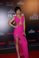 Filmfare-Glamour--Style-Awards-2019-Red-Carpet-(9)