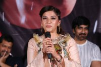 Raja-The-Great-Movie-Theatrical-Trailer-Launch-Stills-(89)