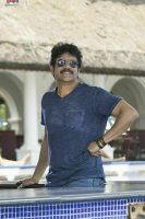 King-Nagarjuna-in-Raju-Gari-Gadi-2-Stills-(6)