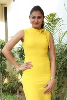 Andrea-Jeremiah-at-Aval-Movie-Trailer-Launch-Image