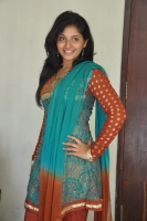 Anjali-New-Gallery-(10)