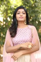 Eesha-Rebba-at-Ugram-Movie-Press-Meet-Photos-(10)