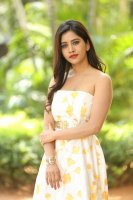 Nabha-Natesh-at-Nannu-Dochukunduvate-Thank-You-Meet-Photos-(23)