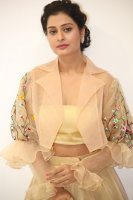 Payal-Rajput-at-RX-100-Movie-Audio-Launch-Photos-(14)