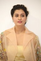 Payal-Rajput-at-RX-100-Movie-Audio-Launch-Photos-(17)
