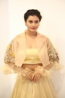 Payal-Rajput-at-RX-100-Movie-Audio-Launch-Photos-(18)