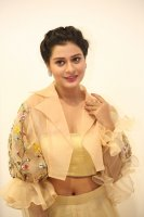 Payal-Rajput-at-RX-100-Movie-Audio-Launch-Photos-(20)