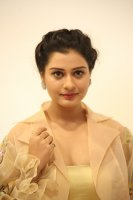 Payal-Rajput-at-RX-100-Movie-Audio-Launch-Photos-(22)