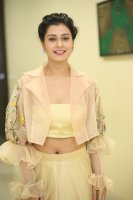 Payal-Rajput-at-RX-100-Movie-Audio-Launch-Photos-(24)