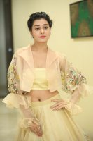 Payal-Rajput-at-RX-100-Movie-Audio-Launch-Photos-(26)