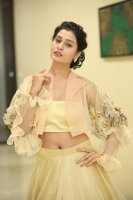 Payal-Rajput-at-RX-100-Movie-Audio-Launch-Photos-(27)
