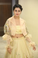 Payal-Rajput-at-RX-100-Movie-Audio-Launch-Photos-(29)