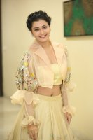 Payal-Rajput-at-RX-100-Movie-Audio-Launch-Photos-(30)