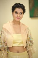 Payal-Rajput-at-RX-100-Movie-Audio-Launch-Photos-(31)