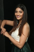 Priya-Vadlamani-at-Shubhalekha-Plus-Lu-Pre-Release-Event-Photos-(19)