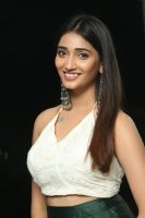 Priya-Vadlamani-at-Shubhalekha-Plus-Lu-Pre-Release-Event-Photos-(24)