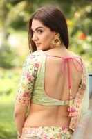 Sakshi-Chaudhary-at-Oollo-Pelliki-Kukkala-Hadavidi-Audio-Launch-Photos--(25)