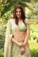 Sakshi-Chaudhary-at-Oollo-Pelliki-Kukkala-Hadavidi-Audio-Launch-Photos--(34)