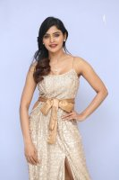 Sanchita-Shetty-at-Party-Movie-Audio-Launch-Photos-(10)