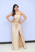 Sanchita-Shetty-at-Party-Movie-Audio-Launch-Photos-(12)