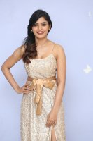 Sanchita-Shetty-at-Party-Movie-Audio-Launch-Photos-(20)