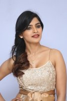 Sanchita-Shetty-at-Party-Movie-Audio-Launch-Photos-(21)