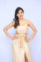 Sanchita-Shetty-at-Party-Movie-Audio-Launch-Photos-(4)
