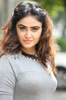 Sony-Charishta-at-Mela-Movie-Press-Meet-Stills-(8)
