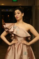 Tamannaah-at-F2-Pre-Release-Event-Photos-(11)