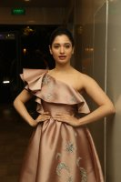 Tamannaah-at-F2-Pre-Release-Event-Photos-(12)