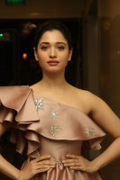 Tamannaah-at-F2-Pre-Release-Event-Photos-(13)