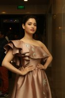 Tamannaah-at-F2-Pre-Release-Event-Photos-(14)