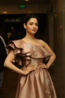 Tamannaah-at-F2-Pre-Release-Event-Photos-(15)
