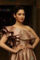 Tamannaah-at-F2-Pre-Release-Event-Photos-(16)