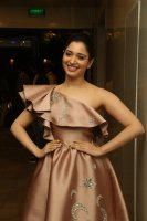 Tamannaah-at-F2-Pre-Release-Event-Photos-(18)
