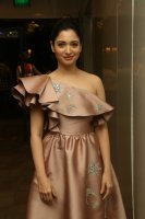 Tamannaah-at-F2-Pre-Release-Event-Photos-(19)