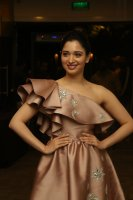 Tamannaah-at-F2-Pre-Release-Event-Photos-(3)