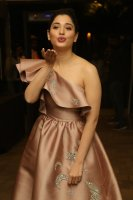 Tamannaah-at-F2-Pre-Release-Event-Photos-(9)