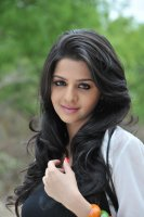 Vedhika-Latest-Photos-(6)