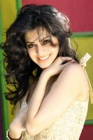 Vedhika-Latest-Photoshoot-(10)