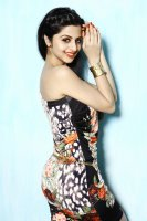 Vedhika-Latest-Photoshoot-(12)