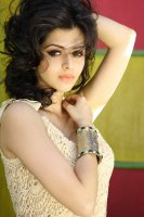 Vedhika-Latest-Photoshoot-(9)