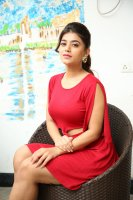 Yamini-Bhaskar-at-Elite-New-Year-2019-Event-Stills-(15)