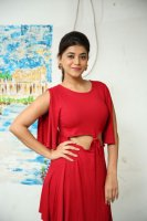 Yamini-Bhaskar-at-Elite-New-Year-2019-Event-Stills-(39)